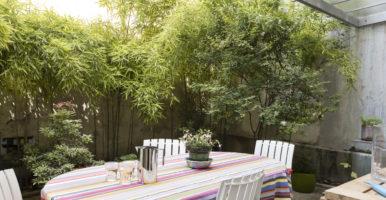 Appartement en rez-de-jardin à Paris